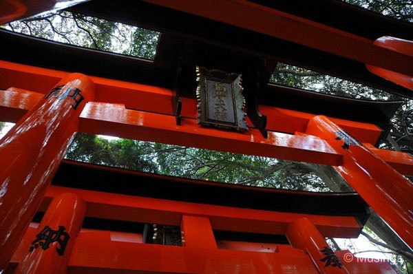 blog-2010-japan-DSC_4581-kyoto-fushimi-shrine