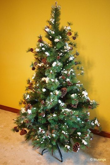 blog-2011-rivervale-OLYP4130-christmas-tree-flickr