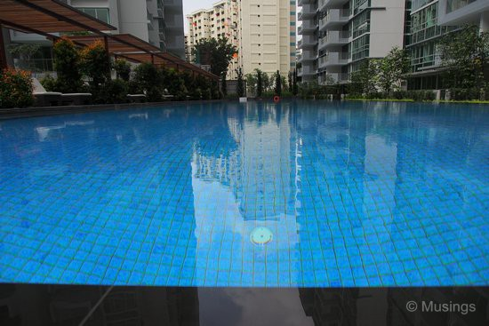 The lap pool, as seen from a low angle.