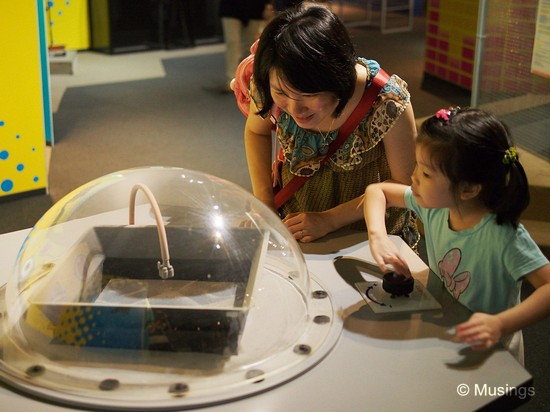 "Interacting with the exhibits at the Science Center. Ling was able to explain the science behind the exhibits, while daddy was easily distracted by everything. ""Oooooh - shiny!!"""