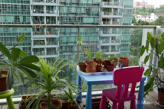 Multi-function balcony LOL.