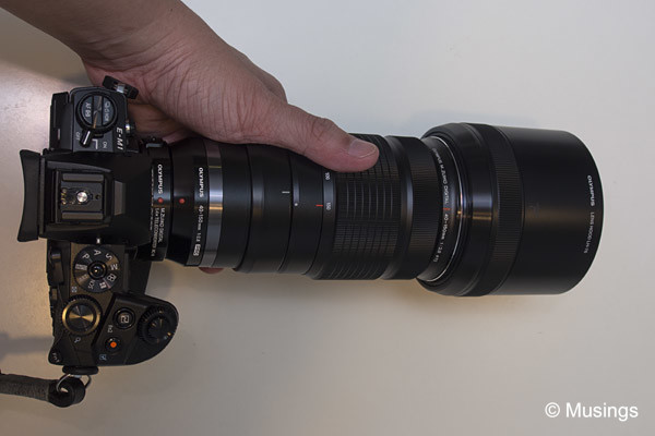 The E-M1 with the 40-150mm and teleconverter. Long lens, making the grip an essential item!